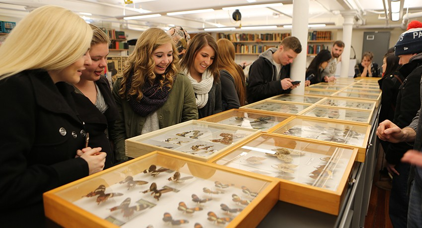 Worcester State University entomology students at Harvard Museum of Comparative Zoology