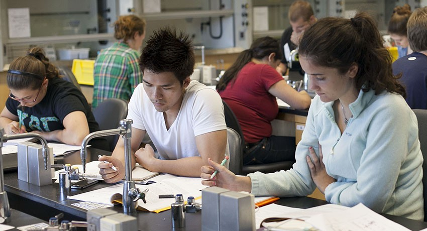 Students in a Worcester State University summer chemistry class