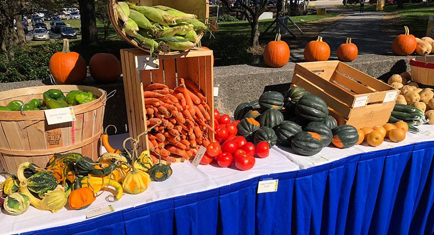 Sustainability Fair, Farmer's Market Table